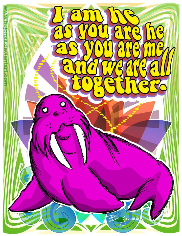 The Walrus song- one of The Beatles best!! The Doctor here: Our high school (location withheld) put on the musical Across the Universe, which is a musical based entirely off of Beatle songs. I played Billy Shears and I got to sing this song as my solo. Side-note (no music related pun intended) that was my second musical and my first solo. :)