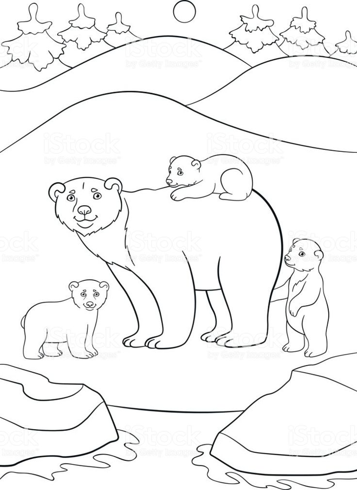 arctic animal coloring pages - Google Search | Arctic ...