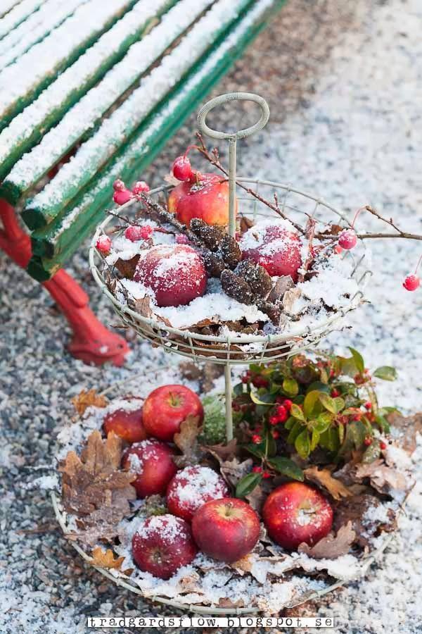 Trädgårdsflow: Red apples