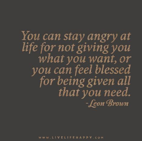 You can stay angry at life for not giving you what you want, or you can feel blessed for being given all that you need. - Leon Brown