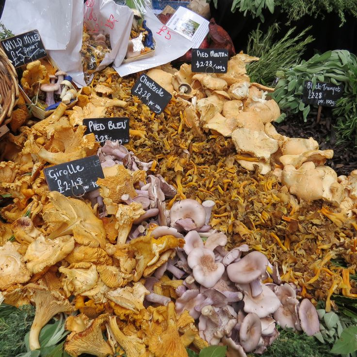 Wild Mushrooms at Borough Market | Food | Pinterest | Mushrooms and ...