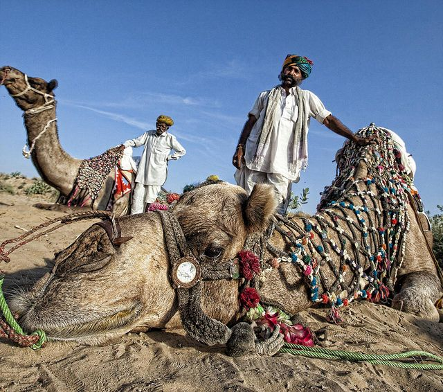 Lonely Planet's '10 best family destinations'  'Rajasthan, India  by Christopher.Michel'  http://www.lonelyplanet.com/themes/family-travel/the-10-best-family-destinations/