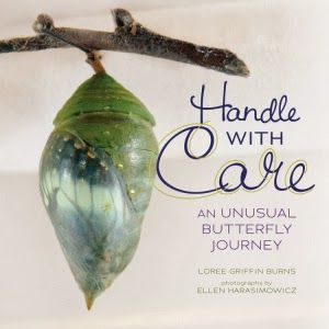 Handle with Care is a teacher's dream. It's the kind of book that kids will be eager to pick up on their own for pleasure reading, and it would be an excellent book to use in science classes. Review from The Non Fiction Detectives.