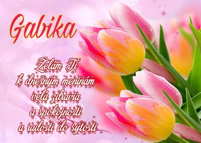 Gabika Želám Ti k dnešným meninám veľa zdravia a spokojnosti, a radosti do sýtosti