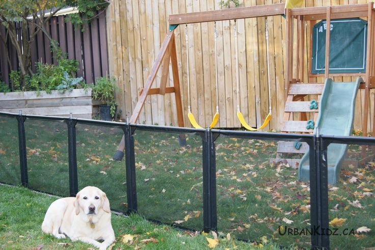 New Ideas Retractable Fence With Dog Wooden Fence With
