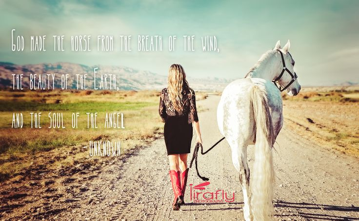 Western Life, Quotes, Phrases, Cowgirls...The Love Of A