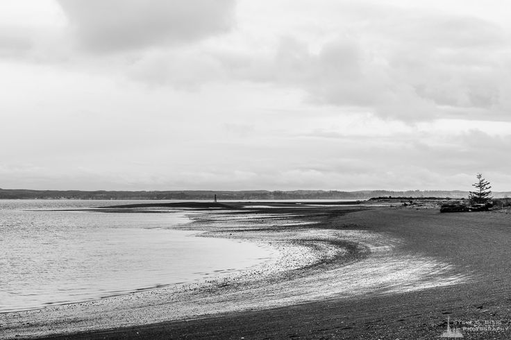 Armstrong Bay, Protection Island, Ocean Shores, Washington, Winter 2017 | #photography #art #prints #wallart
