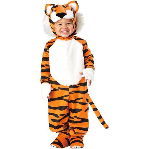 The costume came right on time, however when I pulled it out of the package, the tiger