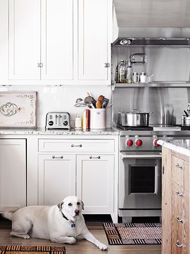 17 best images about rooms with dogs on pinterest log With kitchen cabinets lowes with scottish terrier stickers