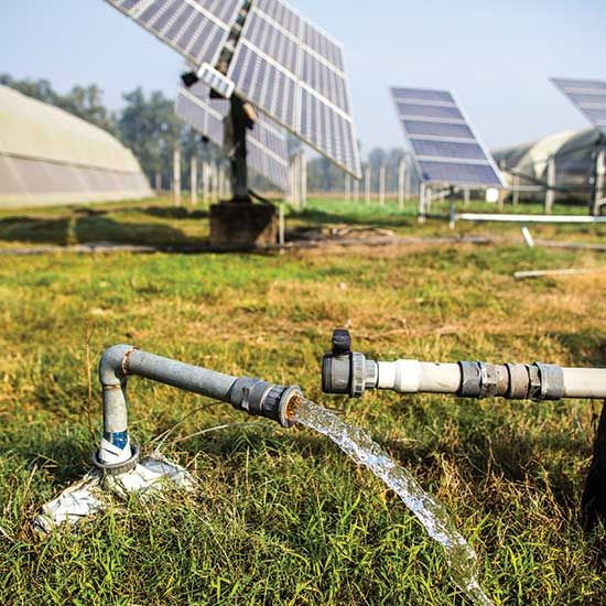 Solar-Powered Water Pumps for Livestock
