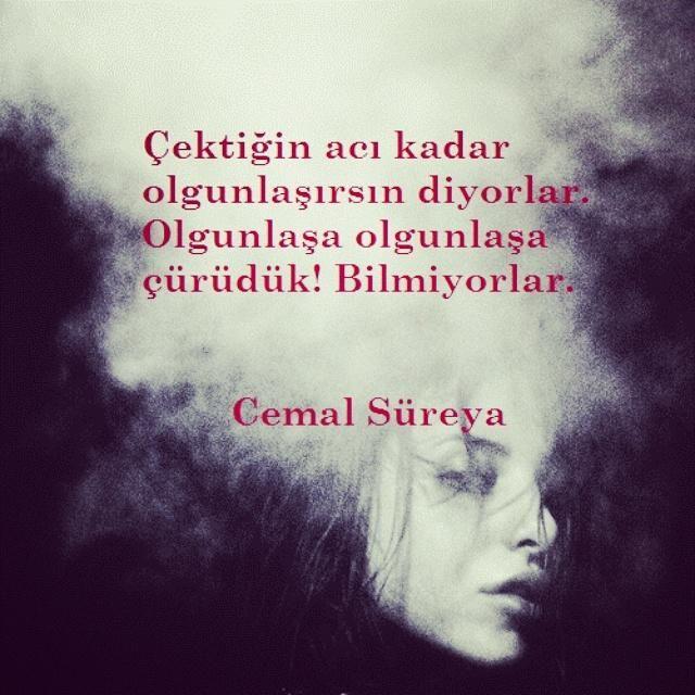 _Cemal Süreya_