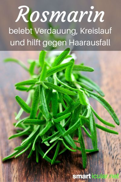 Rosmarin kann weit mehr als nur Schafskäse und Grillfleisch würzen. Diese Pflanze hat es wirklich in sich und ist ein Segen für die Gesundheit!