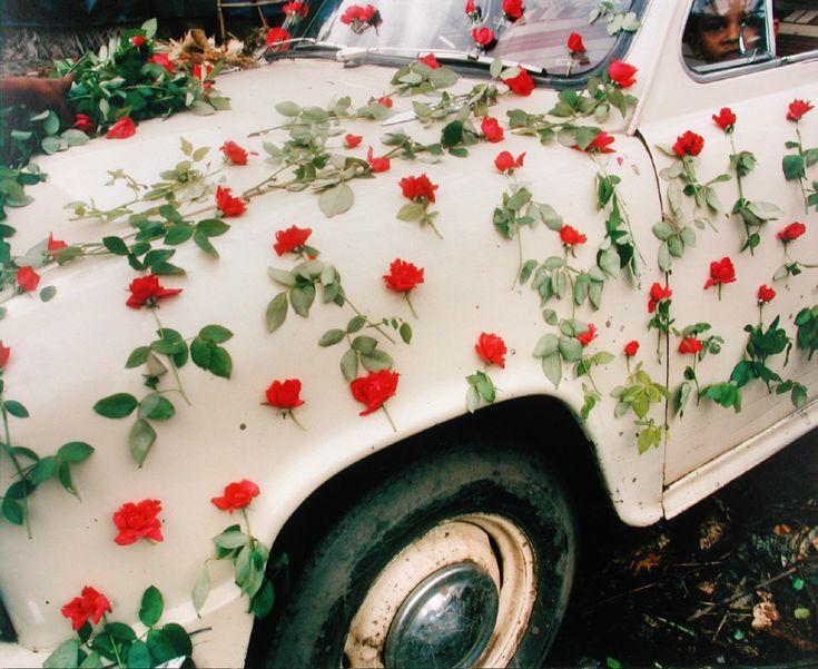 A Decorated Car in the Flower Market, Calcutta, 1953. Leo Rubinfien. Chromogenic print
