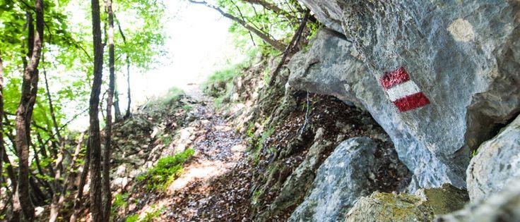 Segnaletica in montagna, i cartelli del Cai. Quali sono e quali informazioni ci…