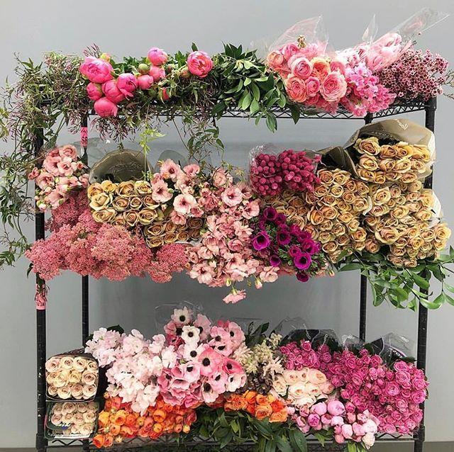 Mayesh Cooler Picks Spring in 2020 Wholesale florist