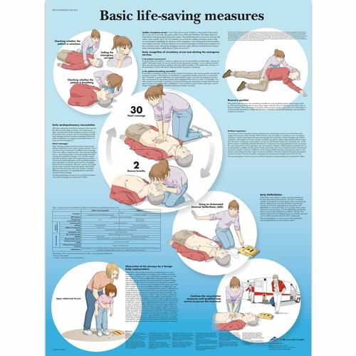 VR1770L: Basic Life Support Chart