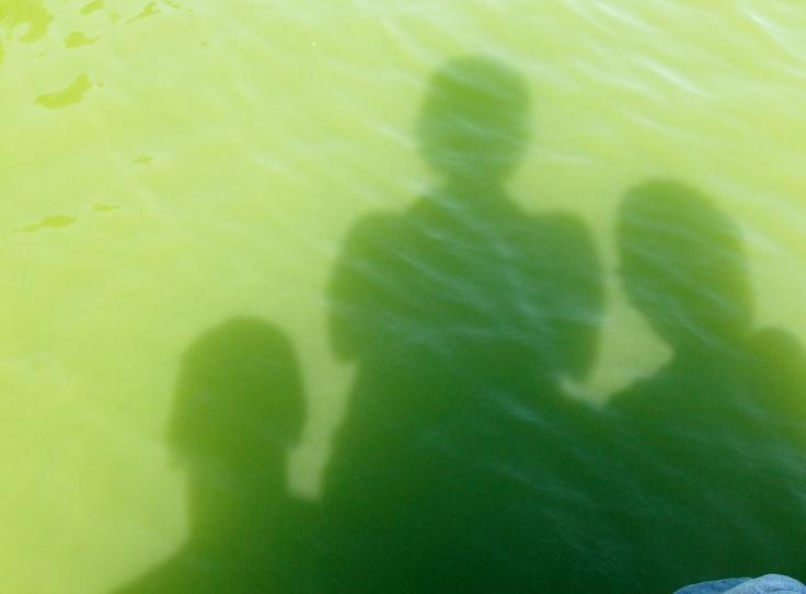 in green water (by Pingwynne)