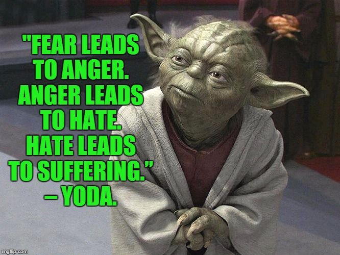 5be6d39113cf7b95155aff890c382542 meme fear leads to anger anger leads to hate hate leads to suffering,Fear Leads To Anger Meme
