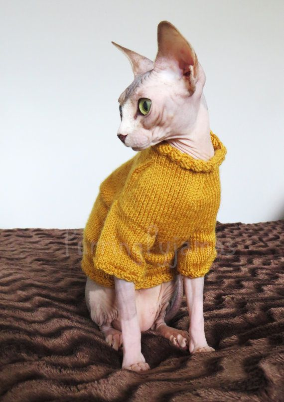 Cat clothes - warm cat sweater, mustard color, handmade, knitted