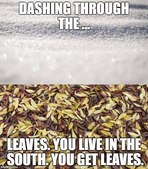 Haha. Bruce and I were just laughing about this today during our run. Leaves everywhere!!! #winterincharleston #morningchill