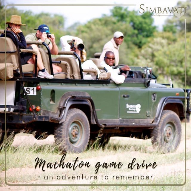 At sunrise or sunset a Machaton game drive is an adventure to remember! . . . #Animals #Wildlife #Wild #TravelPhotography #Simbavati #Safari #GameDrive #SafariPhotography