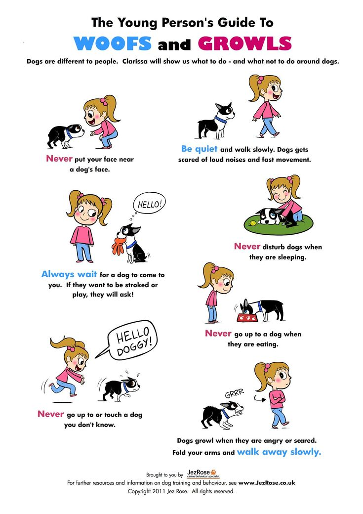 The Young Person's Guide to Woofs and Growls This