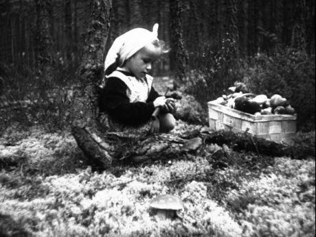 We like picking mushrooms/Grzybobranie [video] (REPOZYTORIUM CYFROWE FILMOTEKI NARODOWEJ) #mushrooms, #polish