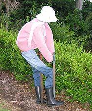 garden scarecrow | Kurrajong Scarecrow Festival 2007 Novelty Displays