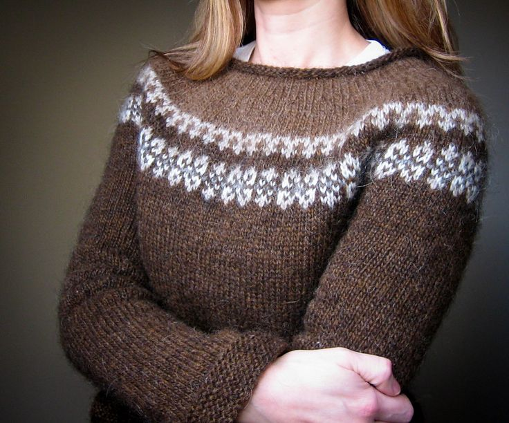 Simple brown Lopi sweater