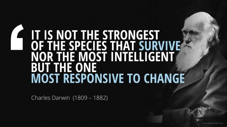 """Motivational Quotes About Success: """"IT IS NOT THE STRONGEST OF THE SPECIES THAT SURVIVE NOR"""