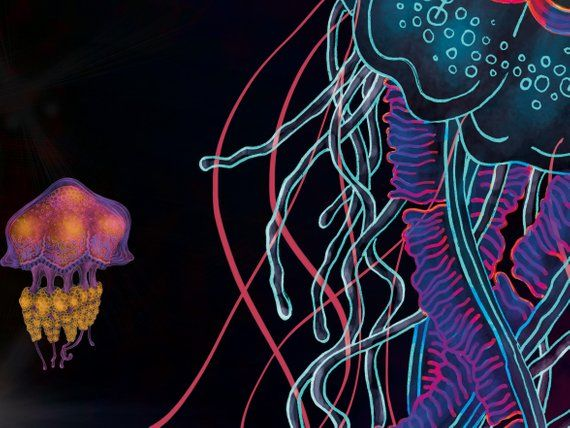 Jellyfish Removable Wallpaper Peel And Stick Wallpaper Etsy Removable Wallpaper Adhesive Wall Art Dark Wallpaper