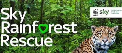The Sky Rainforest Rescue project, carried out in conjunction with the support of WWF, worked with Brazilian communities to protect threatened species of flora and fauna living in the vast Amazon basin. Sky's £3 million campaign helped to protect a piece of one of the world's most threatened habitats.