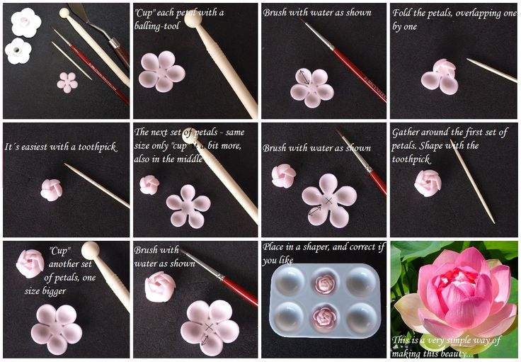 Tutorial - how to make a Lotus flower http://cakeryblog.blogspot.com/2012/04/tutorial-lotus-flower.html
