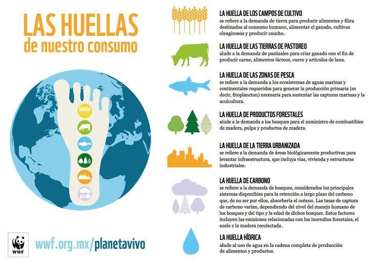 Huella de Consumo #wwf #planetavivo