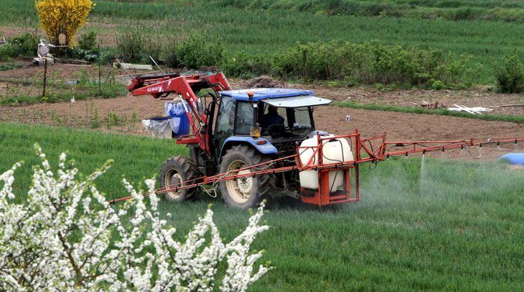 """""""Santé : êtes-vous exposé aux risques liés aux épandages de pesticides ?.. - Si vous habitez en milieu urbain, - Si vous habitez en zone rurale, - Si vous êtes agriculteurs ou professionnels du secteur, - Si vous êtes une femme enceinte ou si vous avez des enfants""""... http://www.francetvinfo.fr/monde/environnement/sante-etes-vous-expose-aux-risques-lies-aux-epandages-de-pesticides_629709.html#"""