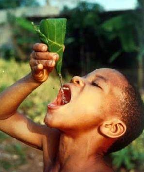Bere acqua è una delle abitudini più importanti per il miglior funzionamento del nostro organismo. Dopo l'ossigeno è la sostanza fondamentale per la salute umana perché è indispensabile per lo svolgimento di tutti i processi fisiologici e le reazioni biochimiche che avvengono nel nostro corpo.