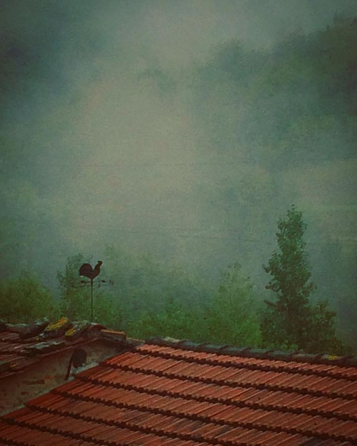 roof in a foggy day