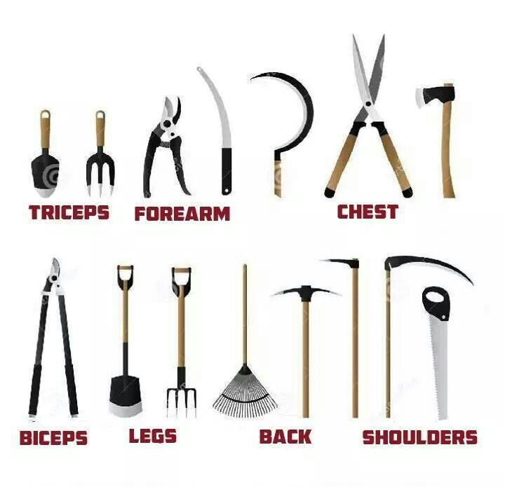 Garden workout garden tools pinterest gardens so for Outils de jardinage en p