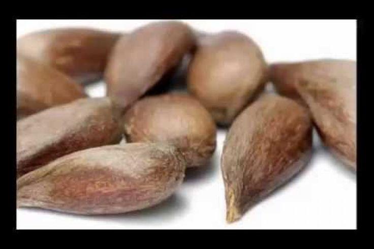 La semilla que cura el cáncer mejor que la quimioterapia