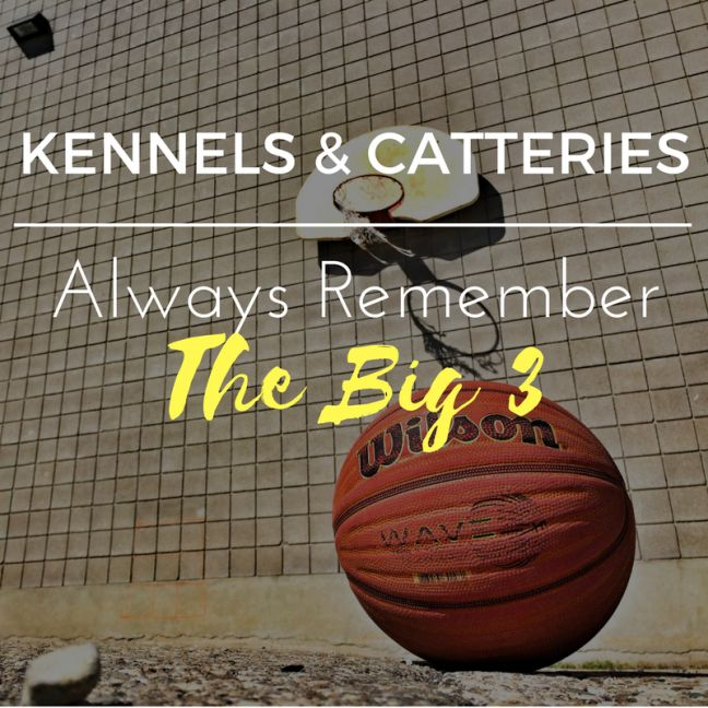 Kennels & Catteries : Always Remember The Big 3