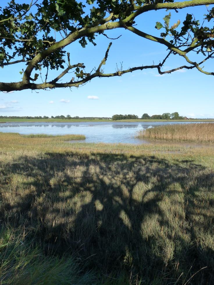 Iken, Suffolk, Mary Vincent