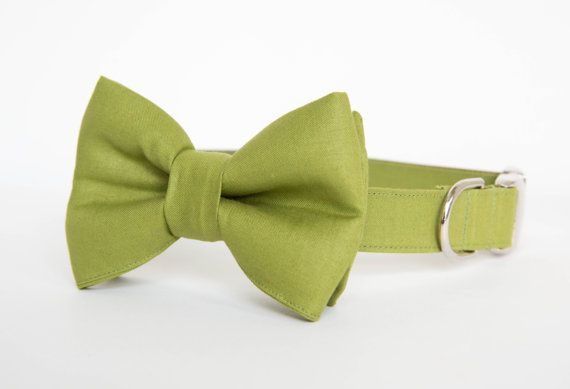 For the pup that likes to keep things classic - our Okra Green Bowtie Dog Collar. Every Pecan Pie Puppies dog bow tie collar is carefully