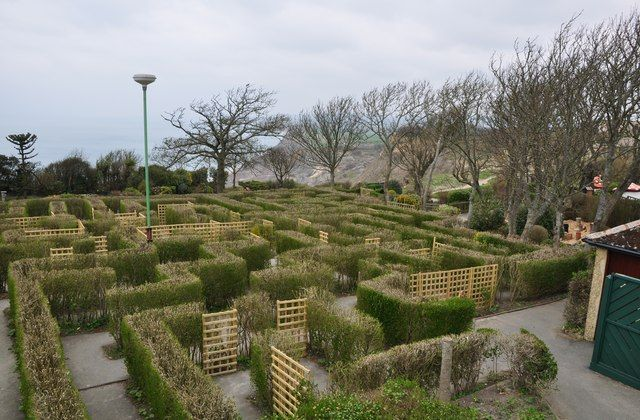 Blackgang Chine : The Hedge Maze  near to Blackgang, Isle of Wight, Great Britain