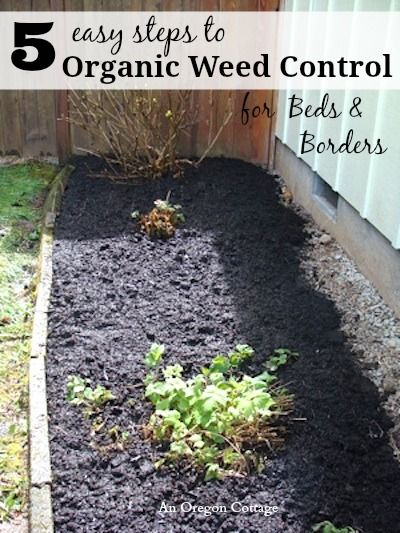 5 Easy Steps To Organic Weed Control for Beds & Borders – this is the 'secret' that I've used for years to not be a slave to weeds! An Oregon Cottage
