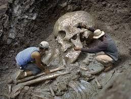 """Képtalálat a következőre: """"óriás emberi csontvázak"""""""