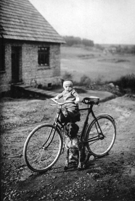 a baby, a cycle and a dog