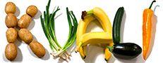 Sorbet - teknik og opskrifter — Kvalitative må forsøge med agavesirup i stedet for sukkersirup.