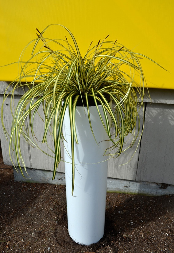 A Little Spring Fun How To Make A Diy Modern Pillar