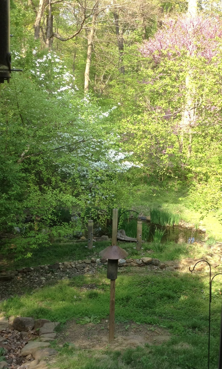 John James Audubon State Park Henderson, KY: James, Kentucky Livin, People Places Things Blue, Moon Blue Grass Goldenrod, Kentucky Wonders, Kentucky S Famous, Places Things Blue Moon Blue