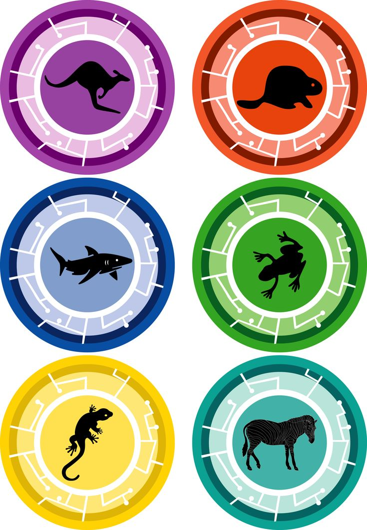 lots of resolutions and creature facts power-disks-1.jpg (2268×3275)